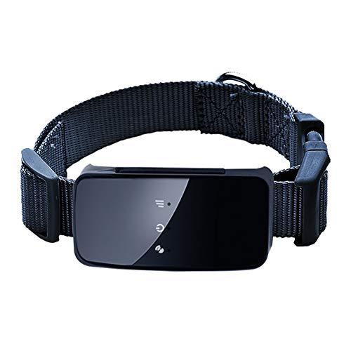 Pet GPS Tracker Plomo, Mini Impermeable GPS Tracker para Perro Cachorro Cat, WiFi GPS Dog/Cat Entrenamiento En Tiempo Real App,Black
