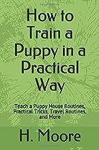Best puppy training cesar millan dog whisperer Reviews