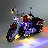 WEEGO Juego de iluminación LED para LEGO Harley Davidson Fatboy Expert Series, juego de luces compatible con modelo Lego Creator 10269 (sin set Lego)