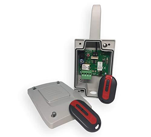 Pack Receptor-emisores 868 Roper para Puertas automáticas