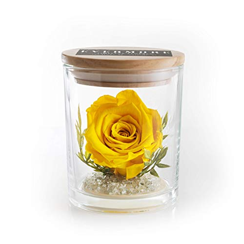 The Evermore Preserved Yellow Rose