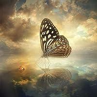 QMGLBG 5Dダイヤモンド塗装 水面蝶とランタンダイヤモンド塗装大人のクリスタルラインストーンアート装飾工芸品30*40cm