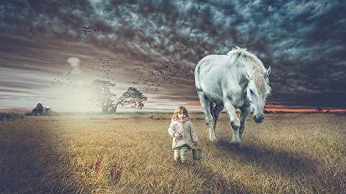 Pintura por números al óleo Kits de pintura Lienzo digital Arte la pared Pinturas Decoraciones Regalos(16X20 In) sin marco-niño caballo campo caminar photoshop