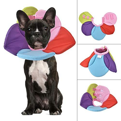 XQAQX Collar a Prueba de mordidas, Collar Colorido, Collar Protector para heridas, Collar de recuperación Colorido Collar con Anillo Anti-mordida para Mascotas Herida Protectora(L)