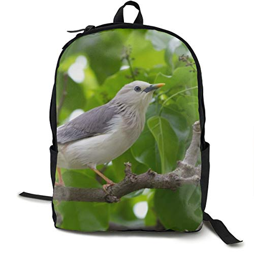 Unisex-Rucksack, klassisch, Vogel, Bäume, Blätter, Äste, grau, lässiger Rucksack, Reisen, Camping, Outdoor, Laptop, Tagesrucksack