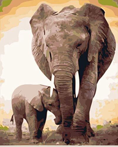 QIAOYUE Pintura por número (con Marco) Pintura de Bricolaje para Adultos y niños, Lienzo preimpreso 40 * 50cm - Elefante y bebé Elefante