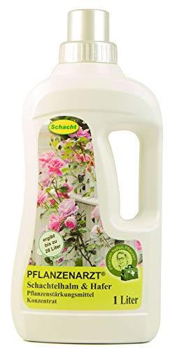 PFLANZENARZT® Schachtelhalm & Hafer Konzentrat, Pflanzenstärkungsmittel zum Gießen und Sprühen für pilzanfällige Pflanzen, 1 Liter
