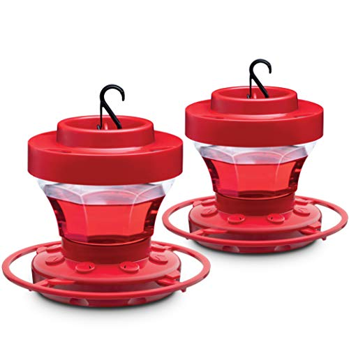 Hummingbird Feeders for Outdoors 16 oz [Set of 2] First Nature Bee Proof Hummingbird Feeders - With Build in Ant Guard - Circular Perch - Wide Mouth for Easy Filling - 2 Part Base for Easy Cleaning