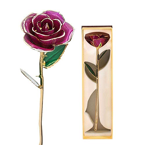 Filfeel Or Rose 24K, Cadeau de Fleur plongé à Longue Tige pour Elle, Fait de Rose fraîche, de la dernière mère pour Toujours/Thanksgiving/Noël/Valentine/fête d'anniversaire/Mariages (Violet)