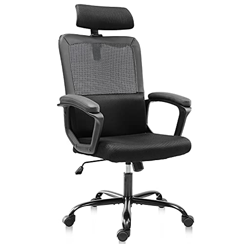 Office Chair, Ergonomic Computer Desk Executive Chairs Mesh Task Chair High Back Adjustable Headrest Padded Armrests Lumbar Support with Clothes Hanger, Dark Black