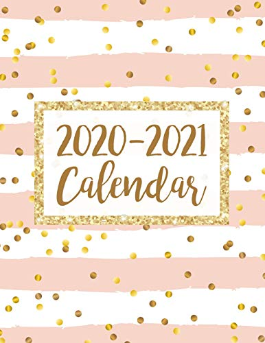 2020-2021 Calendar: 2 Year Jan 2020 - Dec 2021 Daily Weekly Monthly Calendar Planner For To Do List Academic Schedule Agenda Logbook Or Student & Teacher Organizer Journal Notebook, Appointment Business Planners W/ Holidays | Pink Gold Dot