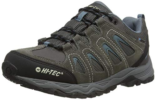Hi-Tec Signal Hill Waterproof, Zapatillas de Senderismo para Hombre, Gris (Dk Gull Grey/Goblin Blue/Rainy Day), 41 EU