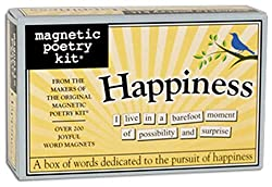 Magnetic poetry kit (Amazon affiliate)