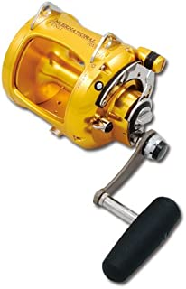 PENN INTERNATIONAL VS 2 SPEED