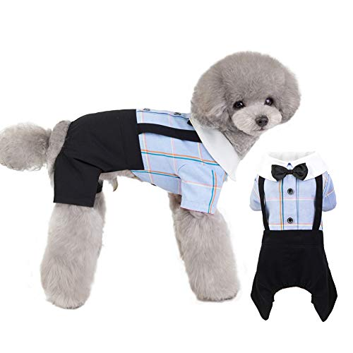 EMUST Dog Shirt, Cute Puppy Clothes, Comfortable Dog Clothes for Small Medium Dogs, Stylish Breathable Pet Apparel, Blue, XL