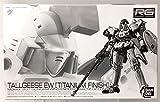 Bandai 1/144 RG OZ-00 MS Tallgeese EW Titanium Finish New Mobile Suit Gundam Gundam W Endless Waltz