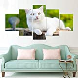 ZYQXI 5 Piezas Impresión Lona Pintura decoración Imprimir Poster Wall HD Art Work Set White Cat Canvas Painting Pictures For Living Kids Room Decorativo-40x60x2 40x80x2 40x100cm