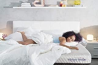 Best k8ng bed frame Reviews