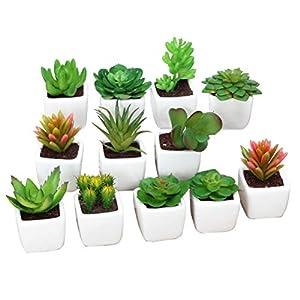 Silk Flower Arrangements 12Pack Decorative Faux Succulent Artificial Succulent Fake Simulation Plants in Square White Ceramic Pots Assorted Pattern