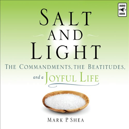 Salt and Light audiobook cover art