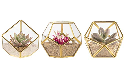 Mini Glass Geometric Terrarium Container,set of 3,Terrarium Gold Set,Glass Flower Pot Planter Vase Bowl Indoor Succulent Fern Moss Air Plants,Display Box Decor Table Window Sill Balcony (NO plants)