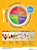 Nutrition Education Store MyPlate MiPlato Photo Poster 18x24 Spanish