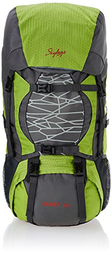 Buy Skybags Nylon 55 Ltrs Grey Hiking Rucksacks (RUC55LGRY)