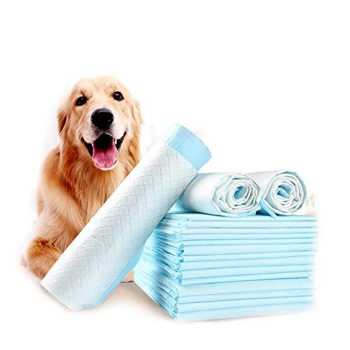 Perro Formación Almohadillas, Almohadillas De Adiestramiento para Mascotas Entrenador De Inodoros Pañales Productos para IR Al Baño Antideslizantes PIS Antideslizantes