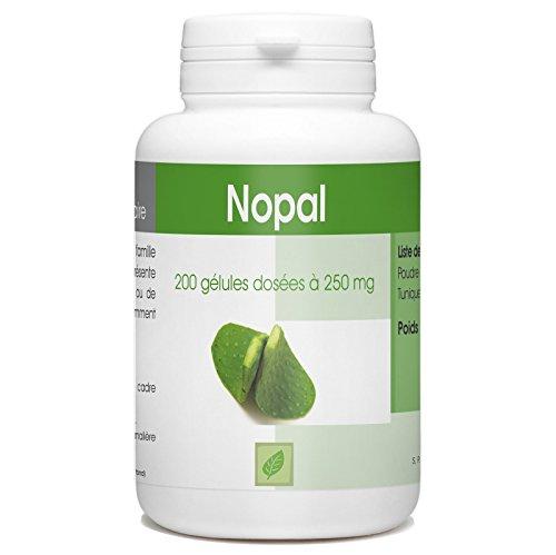 Nopal - Opuntia Ficus Indica - Figuier de Barbarie - 250 mg- 200 gélules
