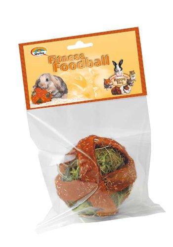 Quiko Fitness Foodball Carrots 2 x 100g - Snack und Spielspaß für alle Nager - Unterstützt das Wohlbefinden durch Fitness, Bewegung und Spiel - Unterstützt den natürlichen Zahnabrieb