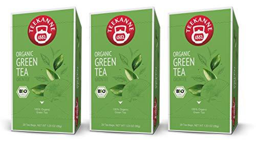 Teekanne Bio Grüner Tee - 3er Pack Green Tea (3 x 20 Beutel, 105 g)