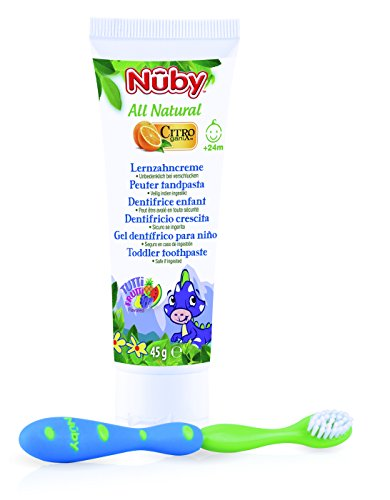 Nuby CG18045 All Natural Combo Pack – Complete Toothpaste and Toothbrush