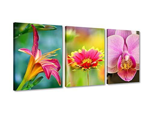 Foto Canvas Cuadros de Flores Modernos | Lienzos Decorativos - Decoración Dormitorios - Cuadros Decoración Salón | Cuadros Modernos con Flores 30 x 40 cm x 3 Piezas Listos para Colgar