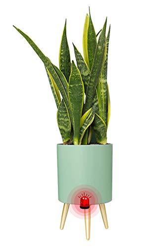 Slimme bloempotten met standaard, Yuepin Zelfwaterende Bloempot met Waterindicator, 7.5 inch Ronde Plantenpot van Kunststof met Alarm voor Watertekort voor Binnen en Buiten (Groen)