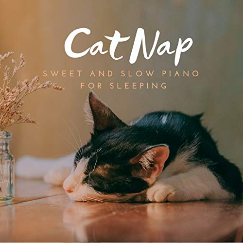 Cat Nap - Sweet and Slow Piano for Sleeping