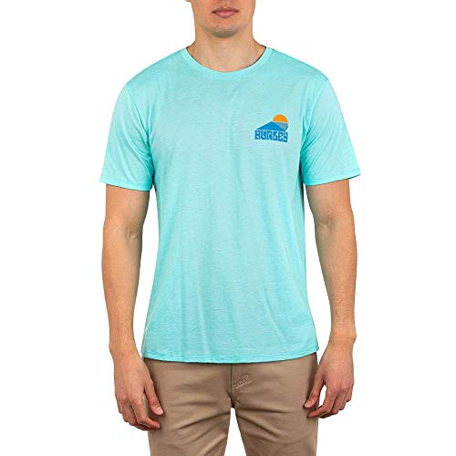 Hurley M Basics S/Tee-Shirts Homme Spruce Fog FR: L (Taille Fabricant: L)