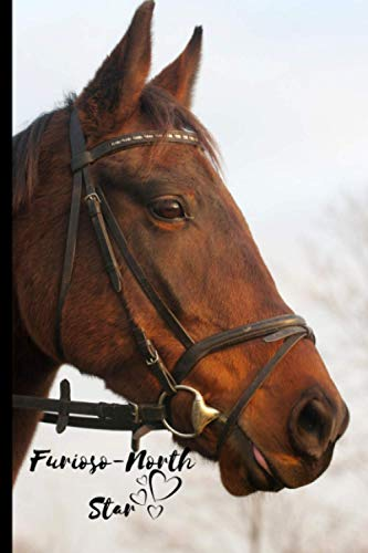 Furioso-North Star Horse Notebook For Horse Lovers: Composition Notebook 6x9' Blank Lined Journal