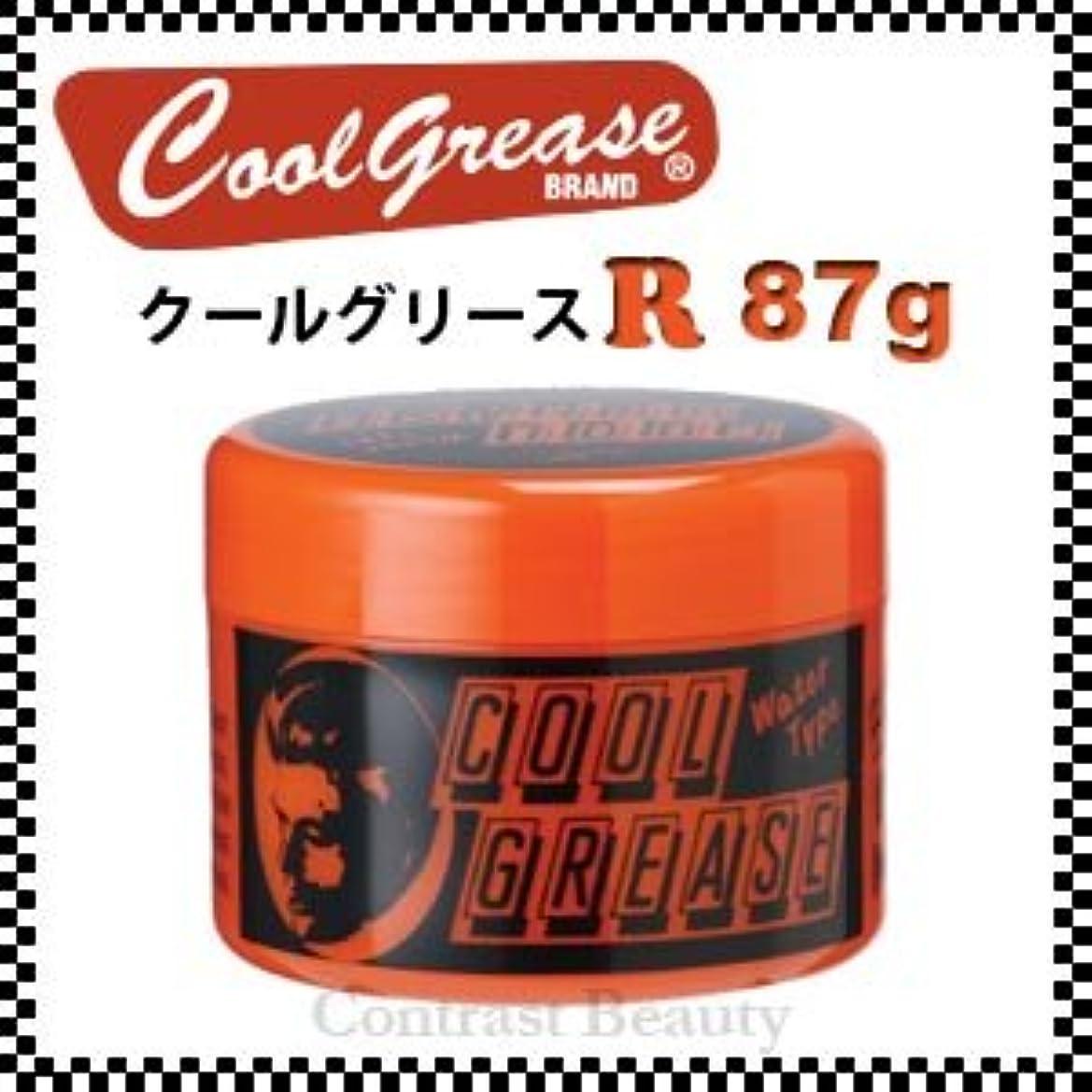 病弱慢嵐の【X2個セット】 阪本高生堂 クールグリース R 87g