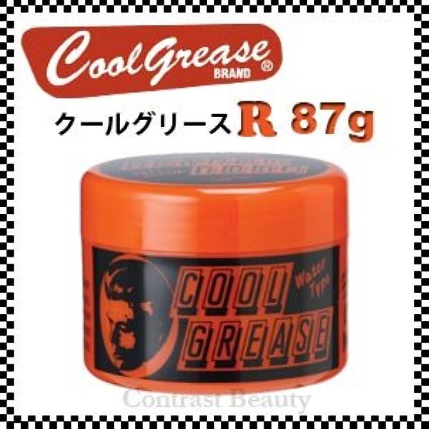 却下するリス悪意【X3個セット】 阪本高生堂 クールグリース R 87g