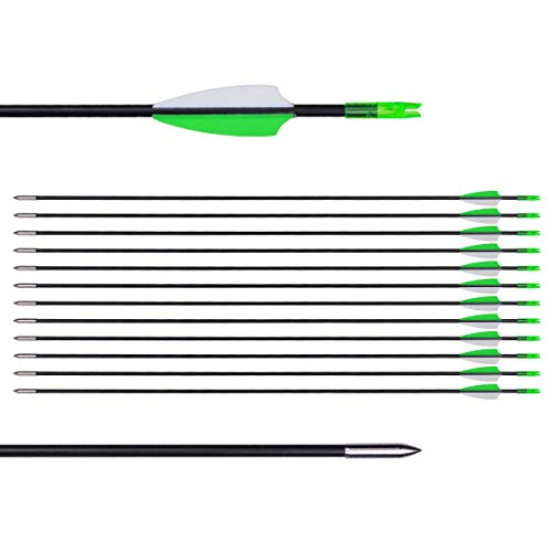 """CUPID 31"""" Training Arrows-Archery Practice Target Arrows with Durable Shaft Blunt Tip for Kids Youth or Beginners on Recurve Bow Long Bow (12pcs Arrows, Green)"""