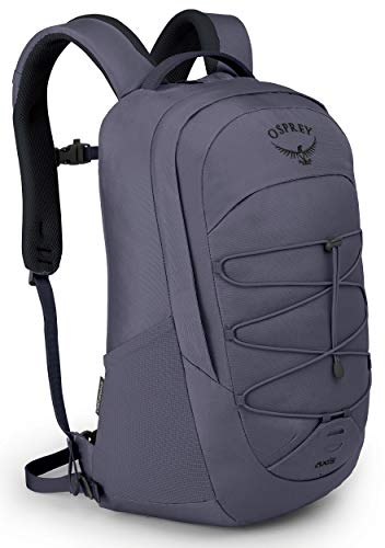 Osprey Axis Laptop Backpack