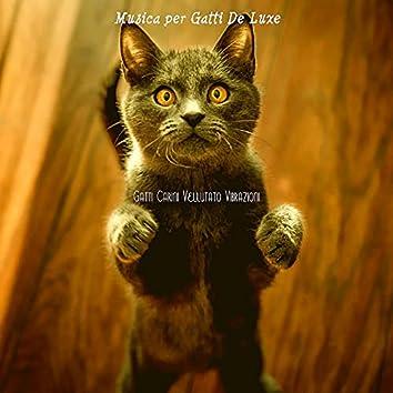 Gatti Carini Vellutato Vibrazioni