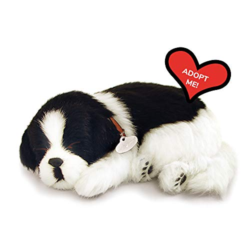 Original Petzzz Border Collie, Realistic, Lifelike Stuffed Interactive Pet Toy, Companion Pet Dog with 100% Handcrafted Synthetic Fur – Perfect Petzzz
