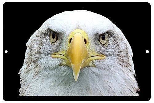 Ameri Bald Eagle Face Cartel de chapa vintage, cartel de cartel de metal, placa de pintura de hierro retro, decoración de pared artística, 12 × 8 pulgadas