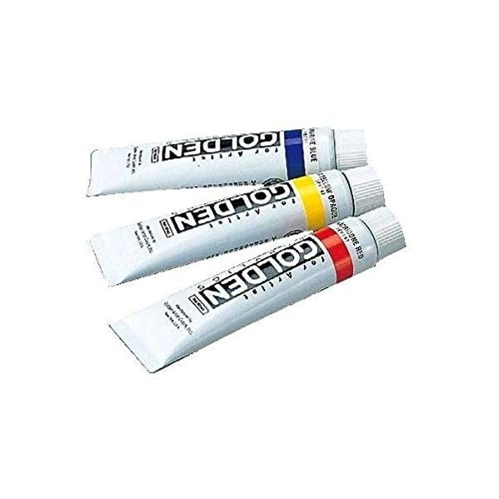 有力者格差倫理的ターナー色彩 アクリル絵具 ゴールデンアクリリックス カドミウムイエローミディアム GL060040 60ml