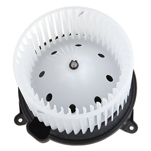 HVAC Plastic Heater Blower Motor ABS w/Fan Cage ECCPP fit for Ford F-150/2003-2006 Ford Expedition /2004-2007 Ford F-150/2006-2008 Lincoln Mark LT /2003-2006 Lincoln Navigator