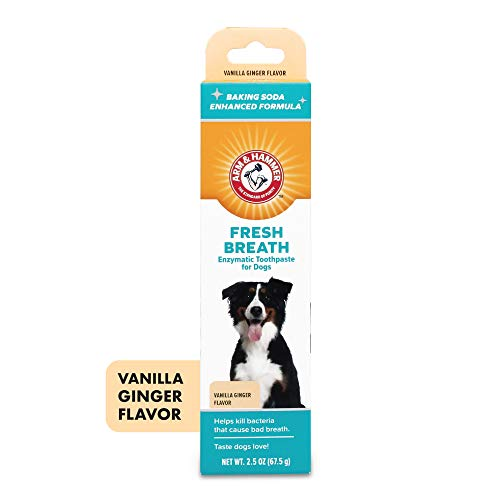 Arm & Hammer Dog Dental Care Fresh Breath Enzymatic Toothpaste for Dogs | No More Doggie Breath | Safe for Puppies, Clinical Care, Vanilla Ginger...