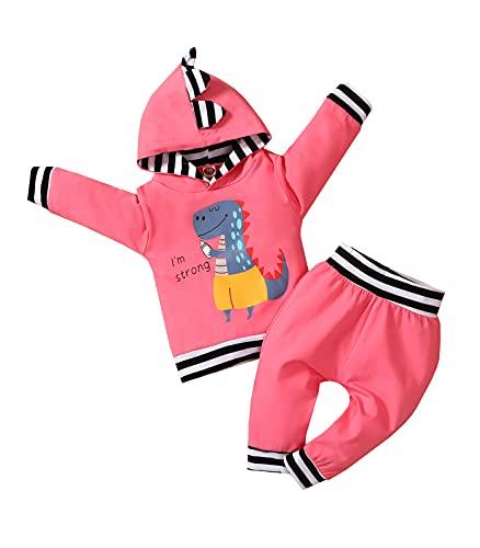 0-24M Dinosaur Newborn Infant Baby Girl Clothes Set Long Sleeve Sweatshirts Tops Pants Outfits Hoodies Pink
