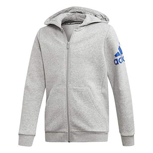 adidas Unisex-Child ED6486_164 Sweatshirt, Grey