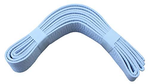 Lisaro kampfsportgürtel Karate Judo Taekwondo Ju Jutsu BJJ Gürtel Gr. 160-320 cm (Weiss, 300)